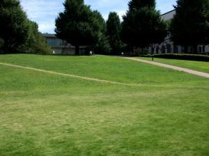 芝生スロープ