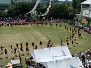 芝生校庭で運動会