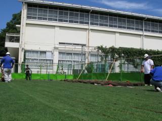 芝生の移設